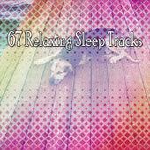 67 Relaxing Sleep Tracks by Baby Sleep Sleep