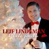 Aito joulu de Leif Lindeman