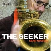 The Seeker by Sean Nowell