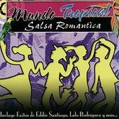 Mundo Tropical - Salsa Romantica de Various Artists