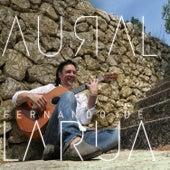 Aural by Fernando De La Rua