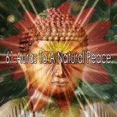 61 Auras To A Natural Peace von Entspannungsmusik