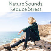 Nature Sounds Reduce Stress – Soft Music for Relaxation, Stress Relief, Ambient Music, Inner Zen, Healing Nature by Nature Sounds (1)