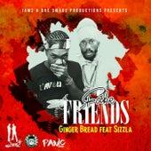 Fake Friends (feat. Sizzla) - Single by Gingerbread