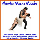 Mambo Mucho Mambo by Various Artists