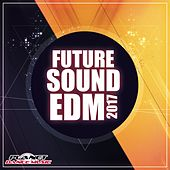 Future Sounds. EDM 2017 - EP by Various Artists