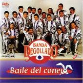 Baile del Conejo by Banda Degollado