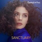 Sanctuary by Emmelie de Forest