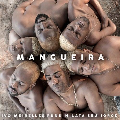 Mangueira de Ivo Meirelles