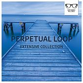 Extensive Collection - EP by Perpetual Loop
