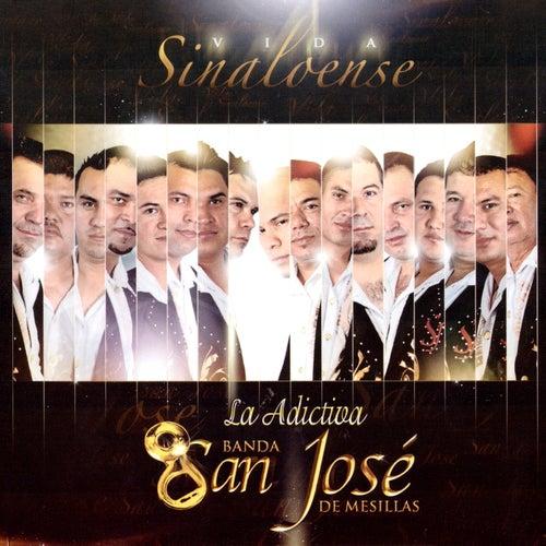 Vida Sinaloense de La Adictiva Banda San Jose de Mesillas