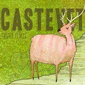 Summer Fences by Castevet