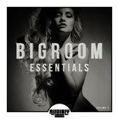 Bigroom Essentials, Vol. 3 by Various Artists