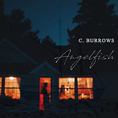 Angelfish by C. Burrows