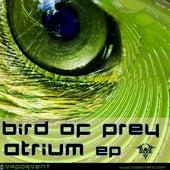 Atrium von BIRDS OF PREY