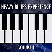 Heavy Blues Experience: Volume 1 by Various Artists
