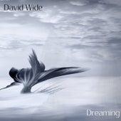 Dreaming von David Wide