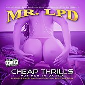 Cheap Thrill$: Put Her In Da Mix de Mr. LPD