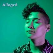 I'm an Introvert by Allegra