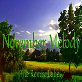 November Melody by Paduraru