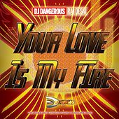 Your Love is My Fire de DJ Dangerous Raj Desai