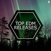 Top EDM Releases by Various Artists