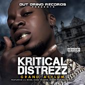 Grand Asylum by Kritical Distrezz
