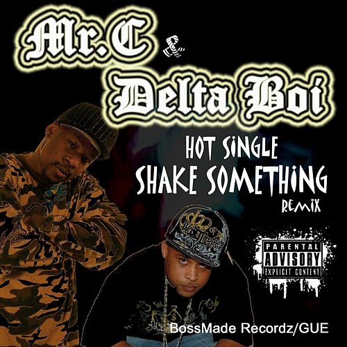 Shake Something (Club Remix) by Mister C