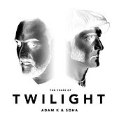 Twilight (Ten Years Of) by Adam K