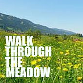 Walk Through The Meadow von Various Artists