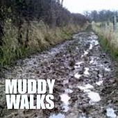 Muddy Walks by Various Artists