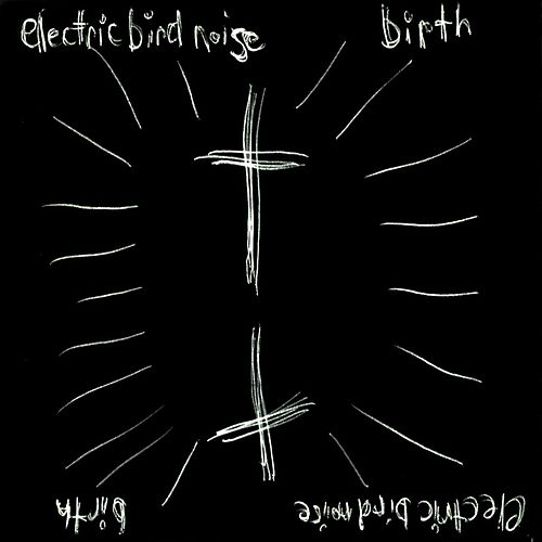 Birth by Electric Bird Noise