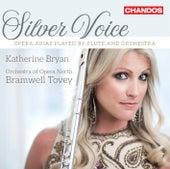 Silver Voice by Katherine Bryan