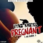 Pregnant (No Mama) by VYBZ Kartel