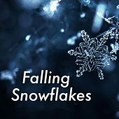 Falling Snowflakes by Various Artists