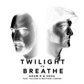 Lost In Twilight by Adam K, Soha, HALIENE, Matthew Steeper