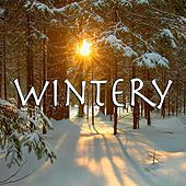 Wintery de Various Artists