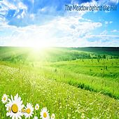 The Meadow Behind the Hill by Nomad