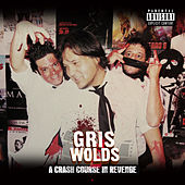 A Crash Course in Revenge by Griswolds