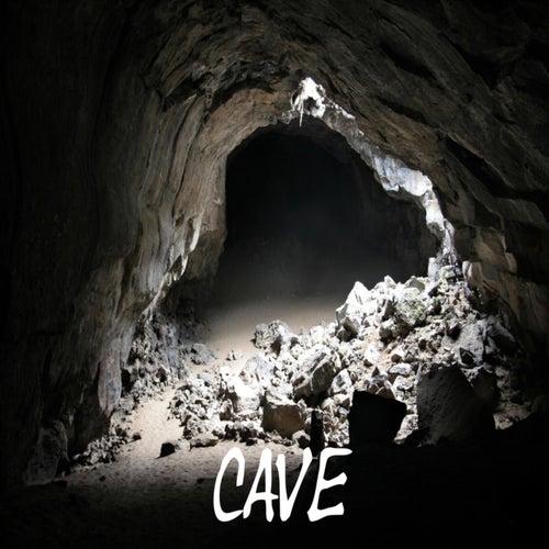 Cave van Caveman