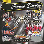 19 Grandes Duetos by Various Artists