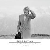 A Victim Of Stars 1982-2012 by David Sylvian