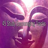 45 Study Encouraging Tracks by Classical Study Music (1)