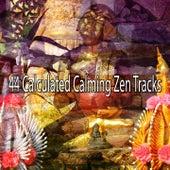 44 Calculated Calming Zen Tracks von Massage Therapy Music