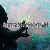 31 Natural Backgrounds For A Sound Mind de Nature Sounds Artists