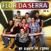 No Banco do Carro, Vol. 18 de Flor Da Serra