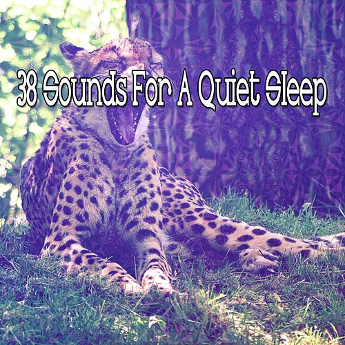 38 Sounds For A Quiet Sleep by Ocean Sounds Collection (1)