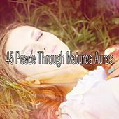 45 Peace Through Natures Auras by Lullaby Land