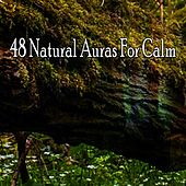 48 Natural Auras For Calm von Best Relaxing SPA Music