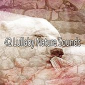 42 Lullaby Nature Sounds by Lullaby Land